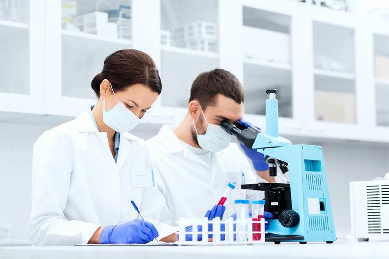 Pet Blood Tests تحليل الدم للحيوان