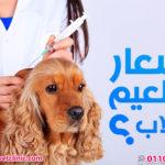 اسعار تطعيم الكلاب 2018