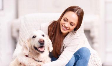اماكن بيع تطعيمات الكلاب